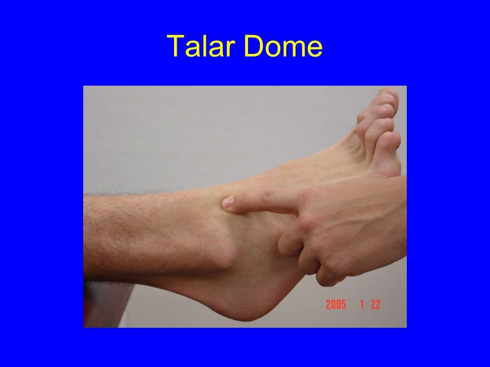 Talar Dome