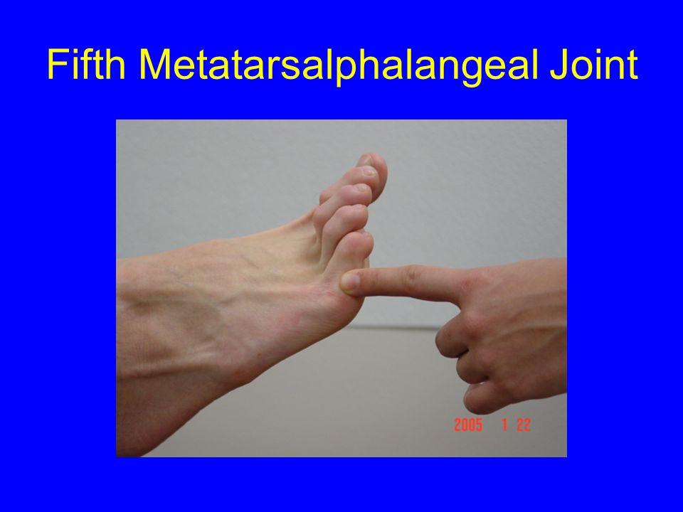 Fifth Metatarsalphalangeal Joint