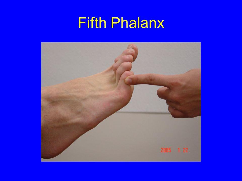 Fifth Phalanx