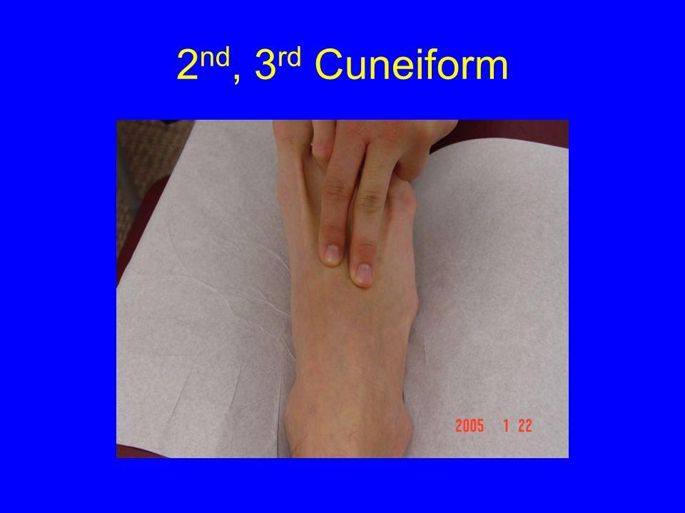 2 nd, 3 rd Cuneiform