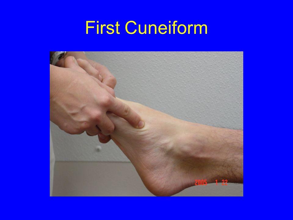 First Cuneiform