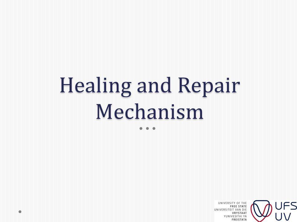 Healing and Repair Mechanism