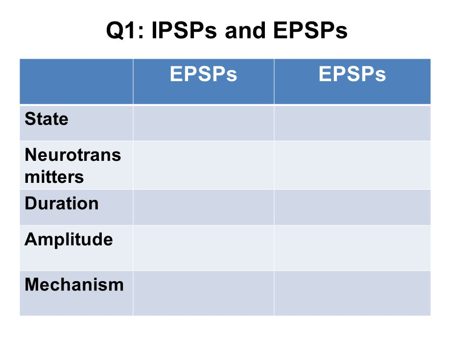 Q1: IPSPs and EPSPs EPSPs State Neurotrans mitters Duration Amplitude Mechanism