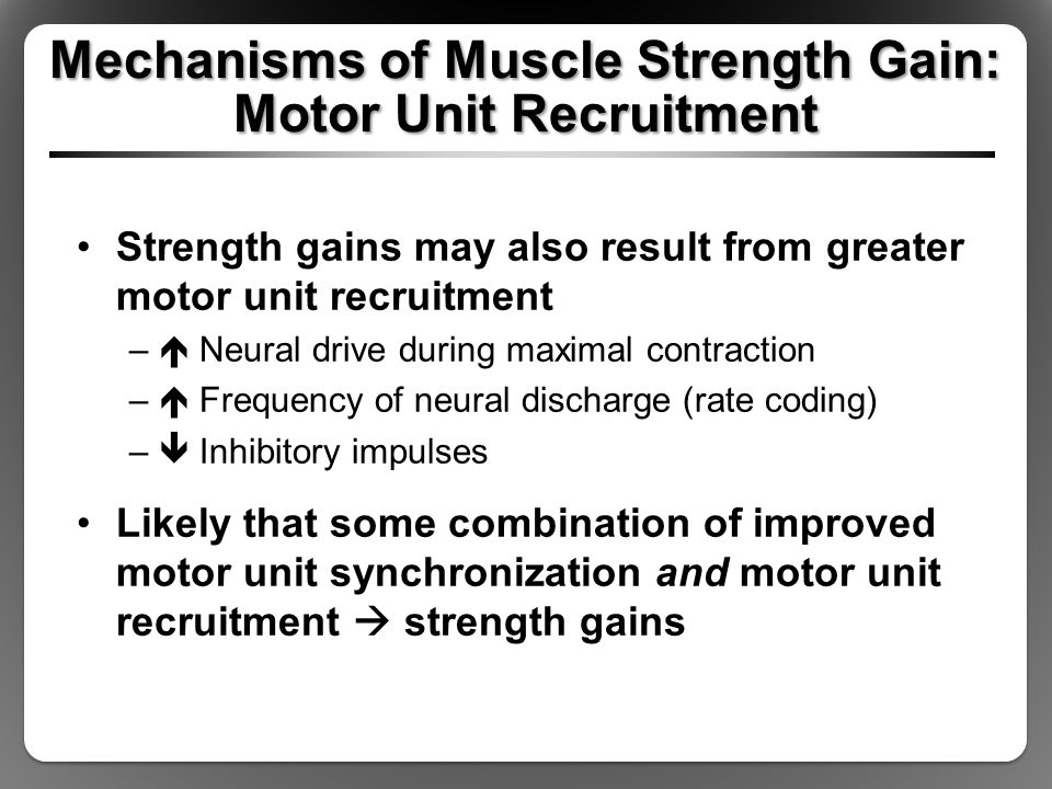 Mechanisms of Muscle Strength Gain: Motor Unit Recruitment Strength gains may also result from greater motor unit recruitment –  Neural drive during maximal contraction –  Frequency of neural discharge (rate coding) –  Inhibitory impulses Likely that some combination of improved motor unit synchronization and motor unit recruitment  strength gains