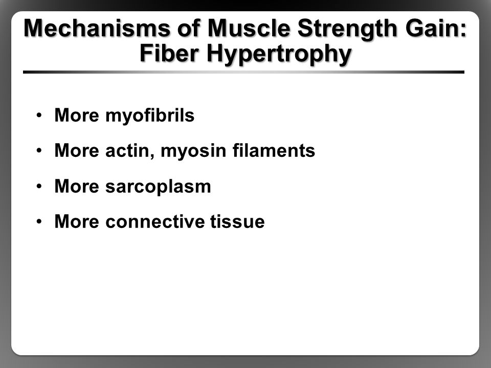 Mechanisms of Muscle Strength Gain: Fiber Hypertrophy More myofibrils More actin, myosin filaments More sarcoplasm More connective tissue