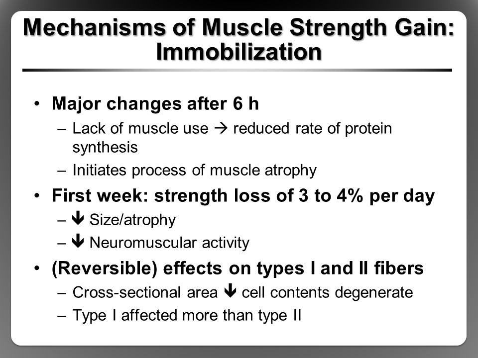 Mechanisms of Muscle Strength Gain: Immobilization Major changes after 6 h –Lack of muscle use  reduced rate of protein synthesis –Initiates process