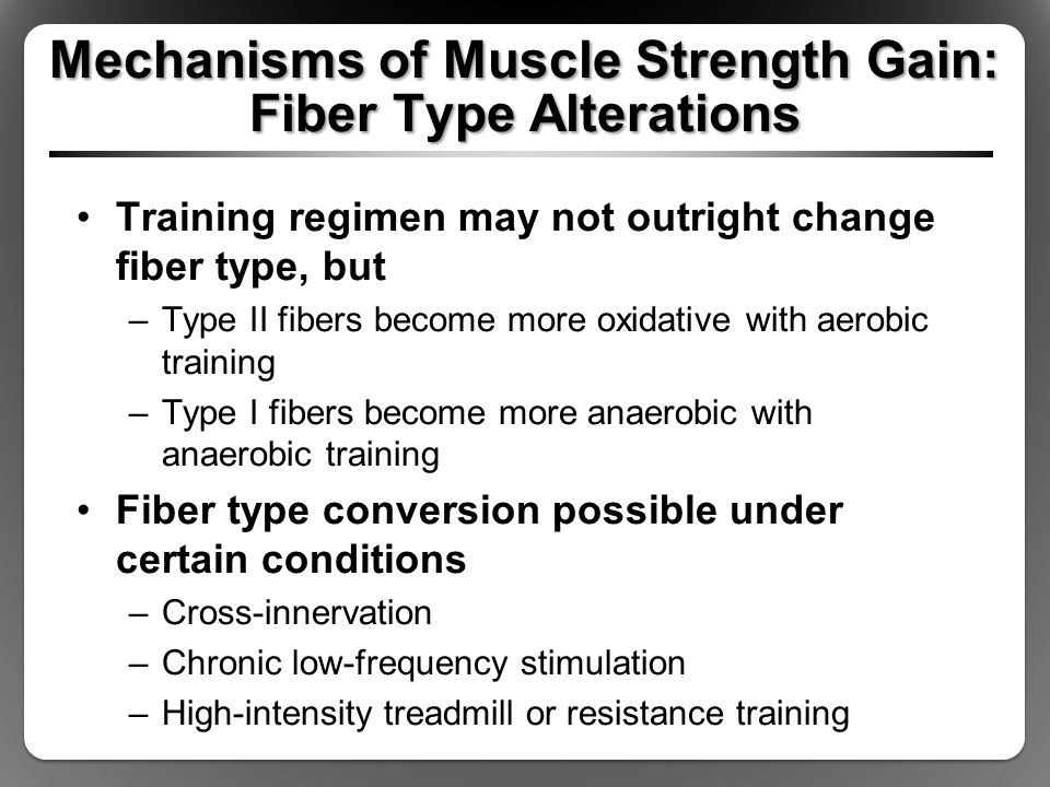 Mechanisms of Muscle Strength Gain: Fiber Type Alterations Training regimen may not outright change fiber type, but –Type II fibers become more oxidative with aerobic training –Type I fibers become more anaerobic with anaerobic training Fiber type conversion possible under certain conditions –Cross-innervation –Chronic low-frequency stimulation –High-intensity treadmill or resistance training