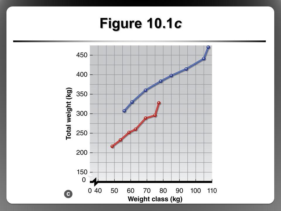 Figure 10.1c