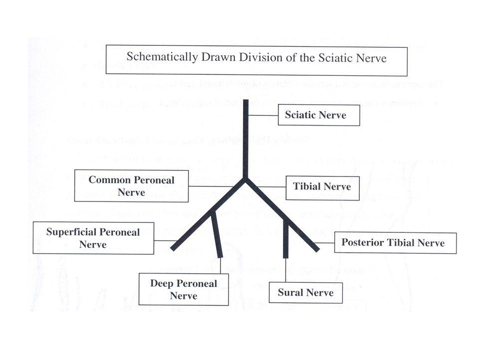 Blocking the sural nerve