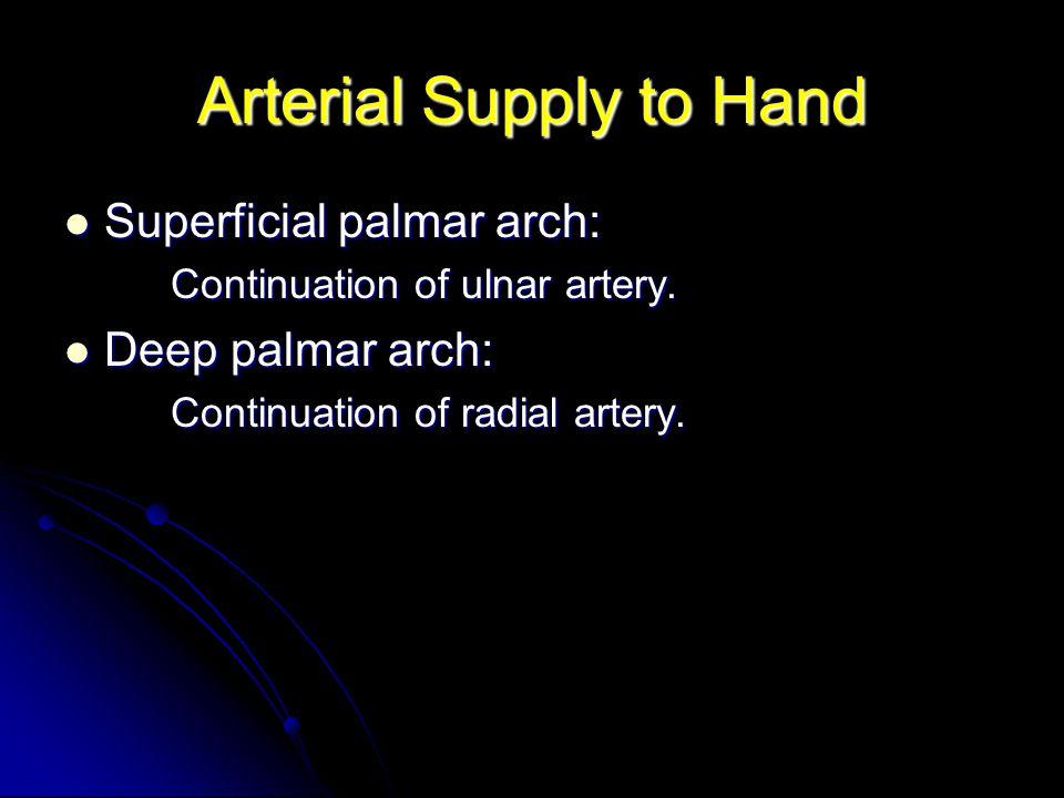 Arterial Supply to Hand Superficial palmar arch: Superficial palmar arch: Continuation of ulnar artery. Deep palmar arch: Deep palmar arch: Continuati