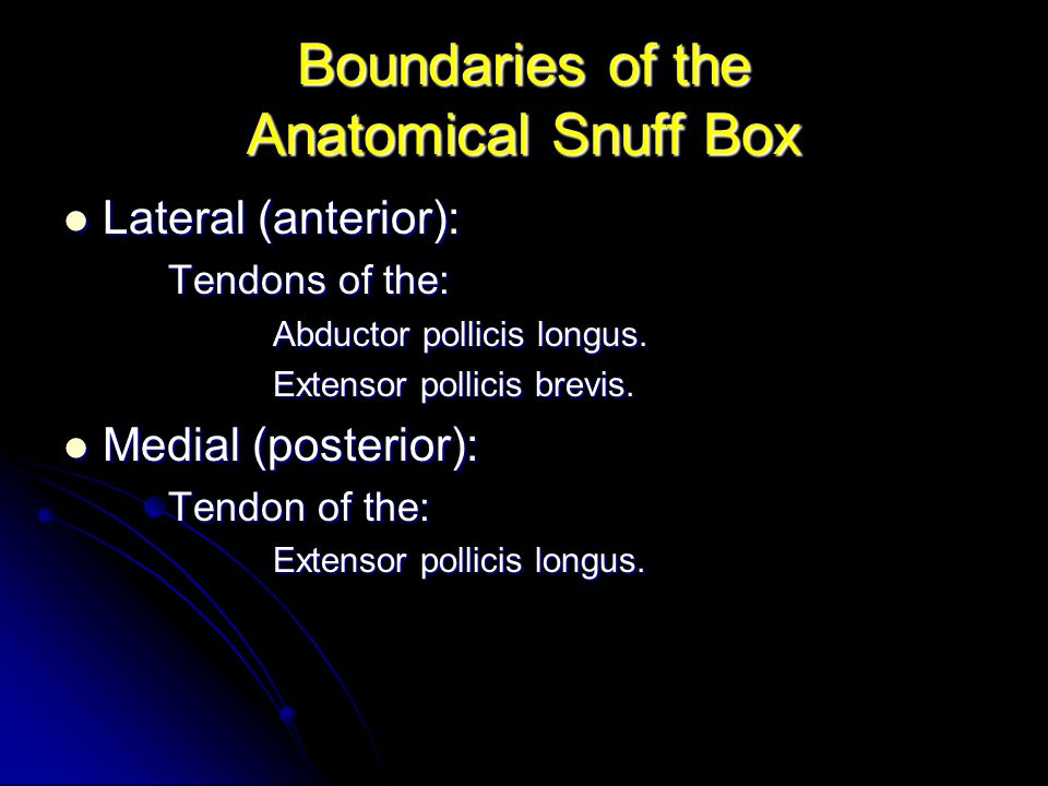 Boundaries of the Anatomical Snuff Box Lateral (anterior): Lateral (anterior): Tendons of the: Abductor pollicis longus. Extensor pollicis brevis. Med