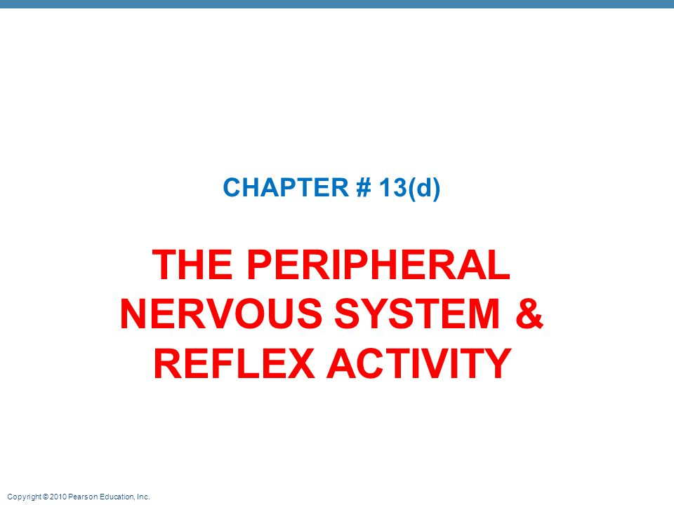 Copyright © 2010 Pearson Education, Inc. THE PERIPHERAL NERVOUS SYSTEM & REFLEX ACTIVITY CHAPTER # 13(d)