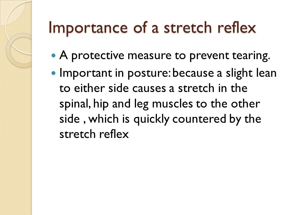Importance of a stretch reflex A protective measure to prevent tearing.