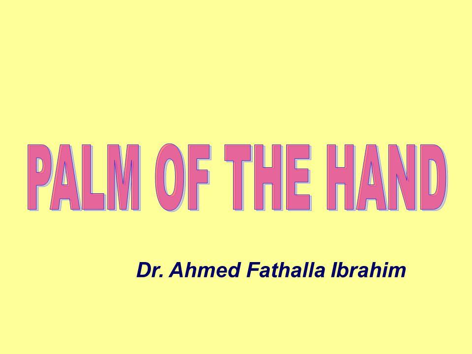 Dr. Ahmed Fathalla Ibrahim