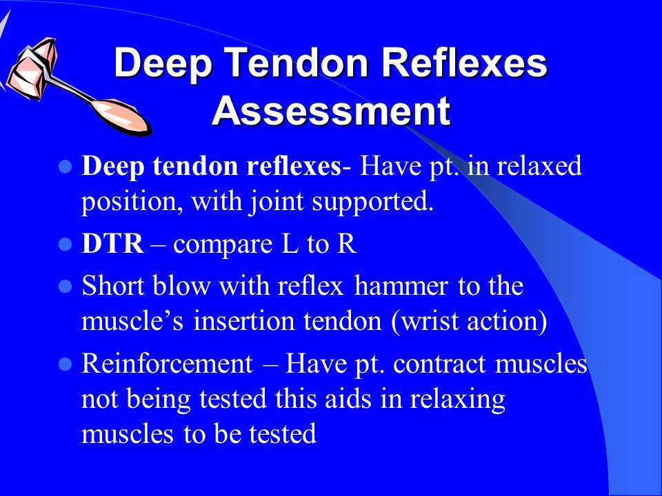 Deep Tendon Reflexes Assessment Deep tendon reflexes- Have pt.