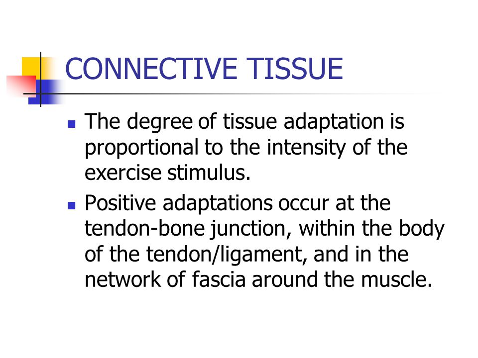 CONNECTIVE TISSUE The degree of tissue adaptation is proportional to the intensity of the exercise stimulus.