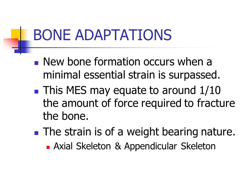As the bone grows the insertion becomes buried in the bone, thus strengthening the junction.