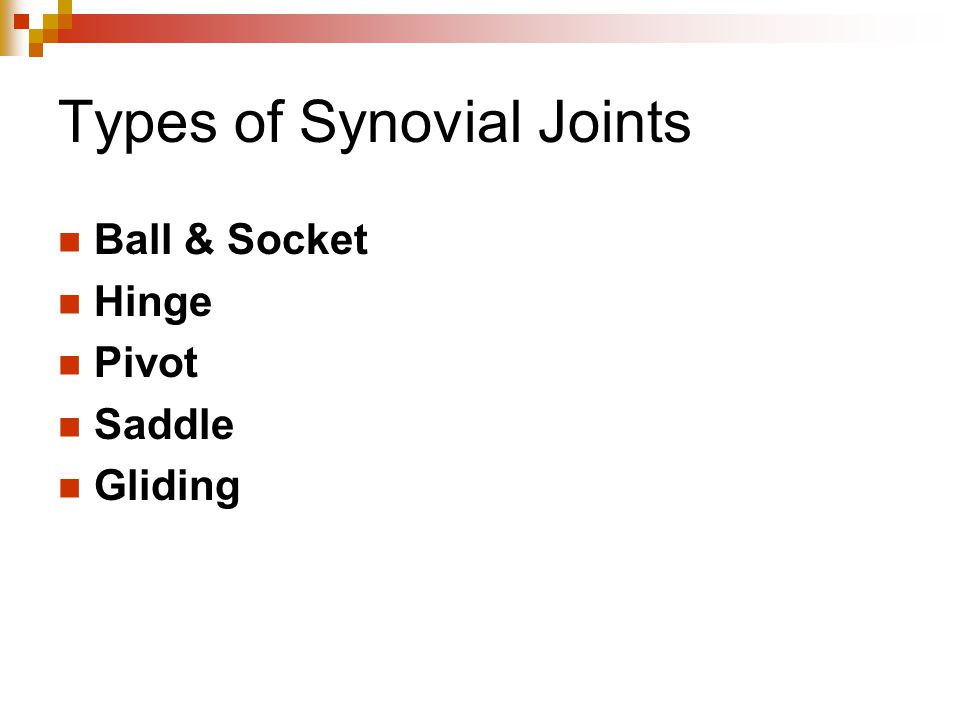 Types of Synovial Joints Ball & Socket Hinge Pivot Saddle Gliding
