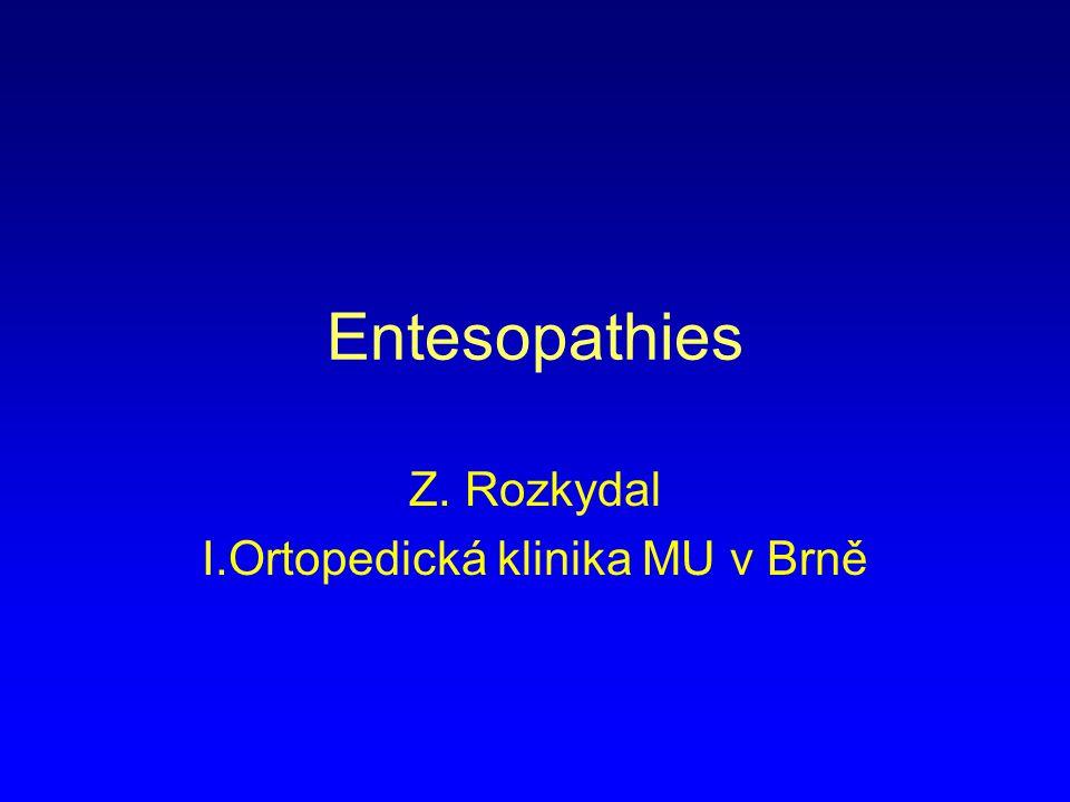 Entesopathies Z. Rozkydal I.Ortopedická klinika MU v Brně