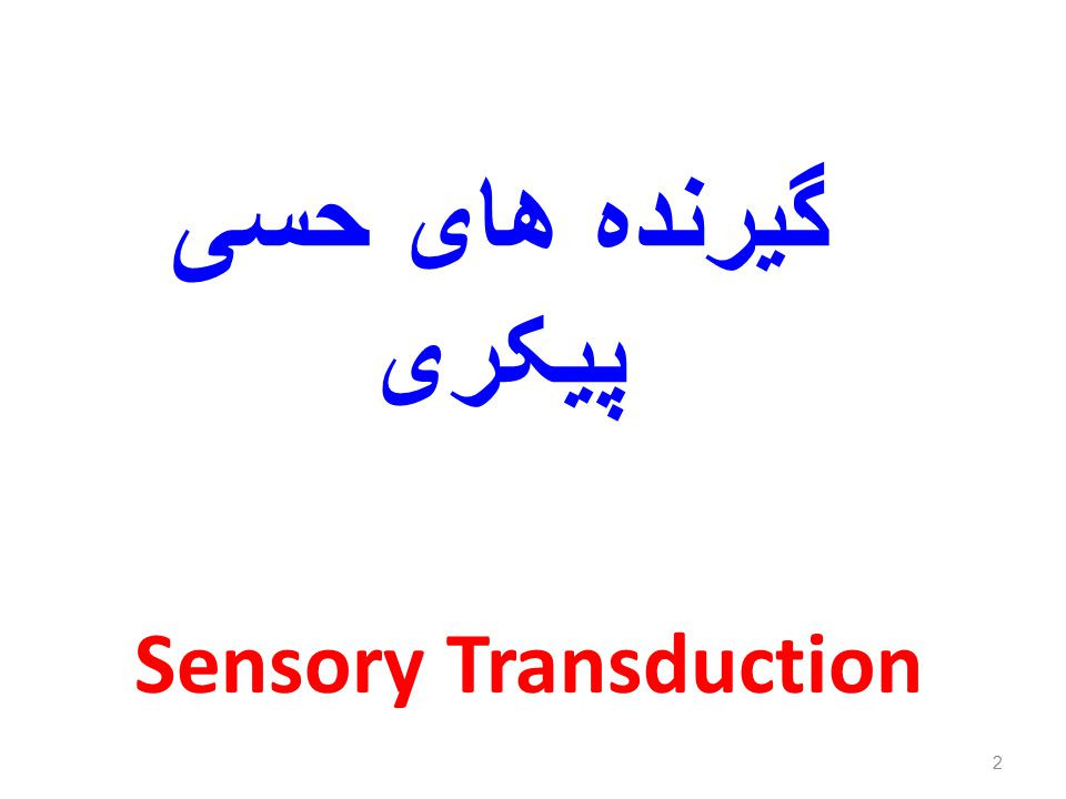 3 Sensory Receptors Sensory receptors are structures that are specialized to respond to changes in their environment Such environmental changes are called stimuli Typically activation of a sensory receptor by an adequate stimulus results in depolarization or graded potentials that trigger nerve impulses along the afferent fibers coursing to the CNS