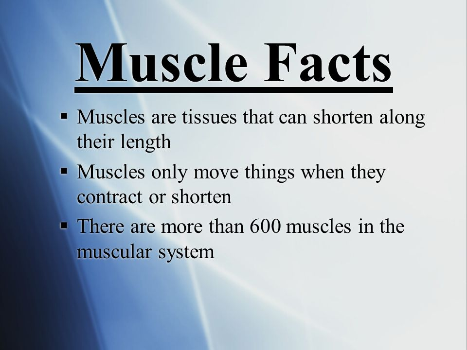 Muscular System  The Muscular System works with the Skeletal System to provide movement.