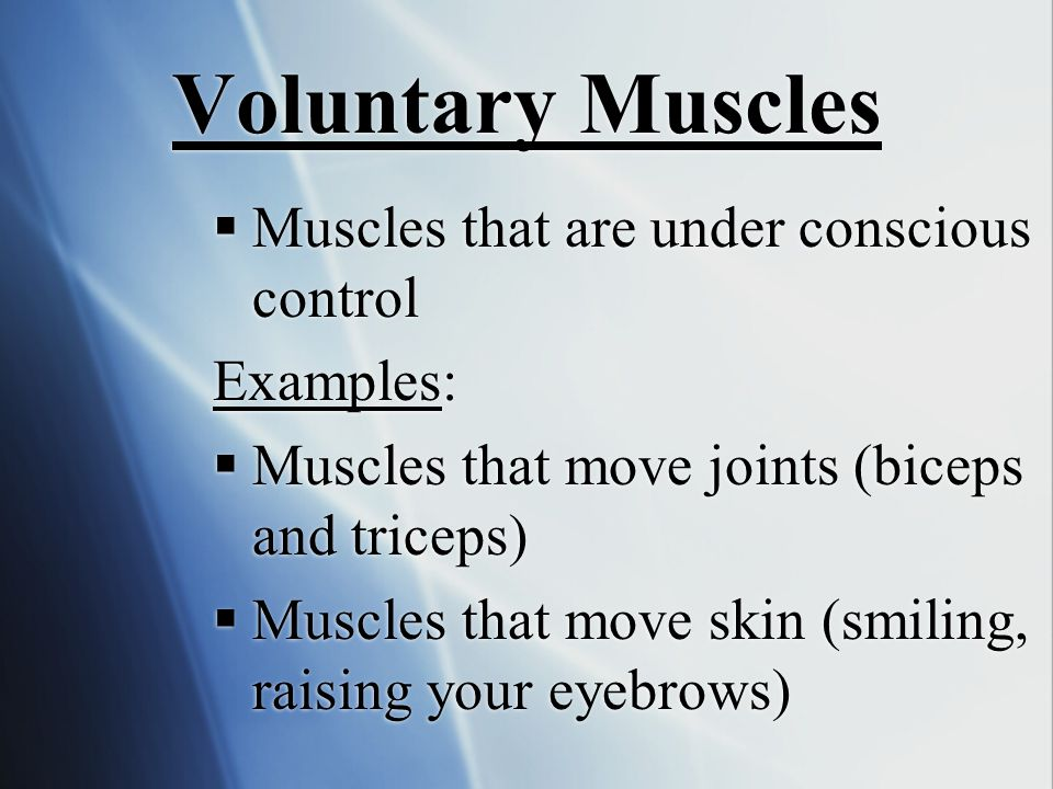 Voluntary Muscles  Muscles that are under conscious control Examples:  Muscles that move joints (biceps and triceps)  Muscles that move skin (smili