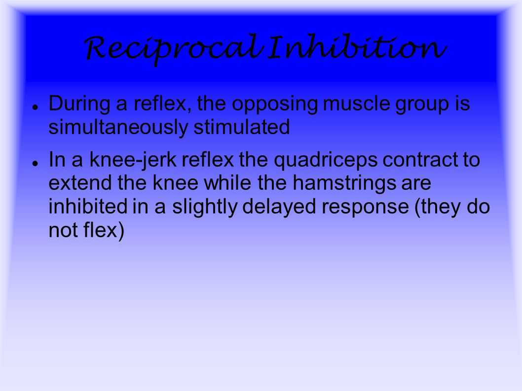 Reciprocal Inhibition During a reflex, the opposing muscle group is simultaneously stimulated In a knee-jerk reflex the quadriceps contract to extend