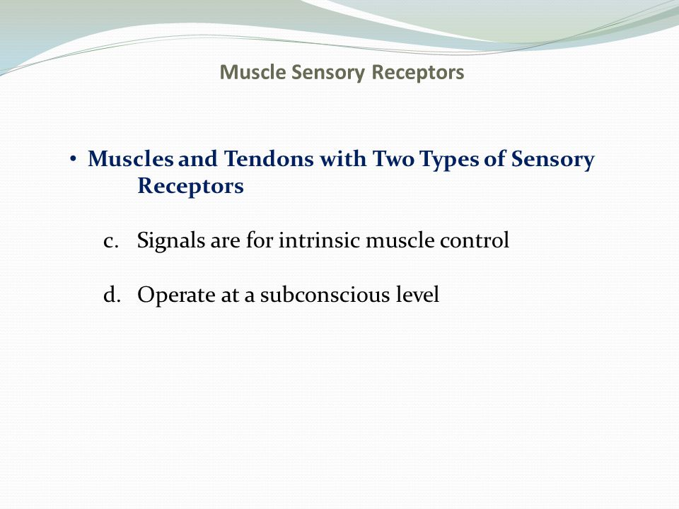 Muscle Sensory Receptors Muscles and Tendons with Two Types of Sensory Receptors c.Signals are for intrinsic muscle control d.Operate at a subconsciou