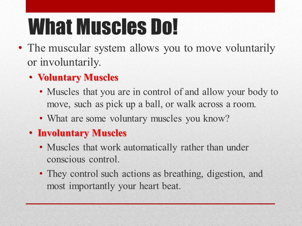 What Muscles Do! The muscular system allows you to move voluntarily or involuntarily. Voluntary Muscles Voluntary Muscles Muscles that you are in cont