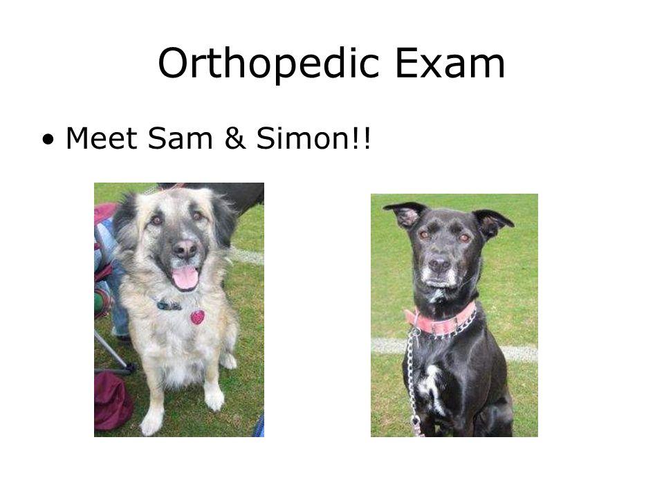 Orthopedic Exam Meet Sam & Simon!!