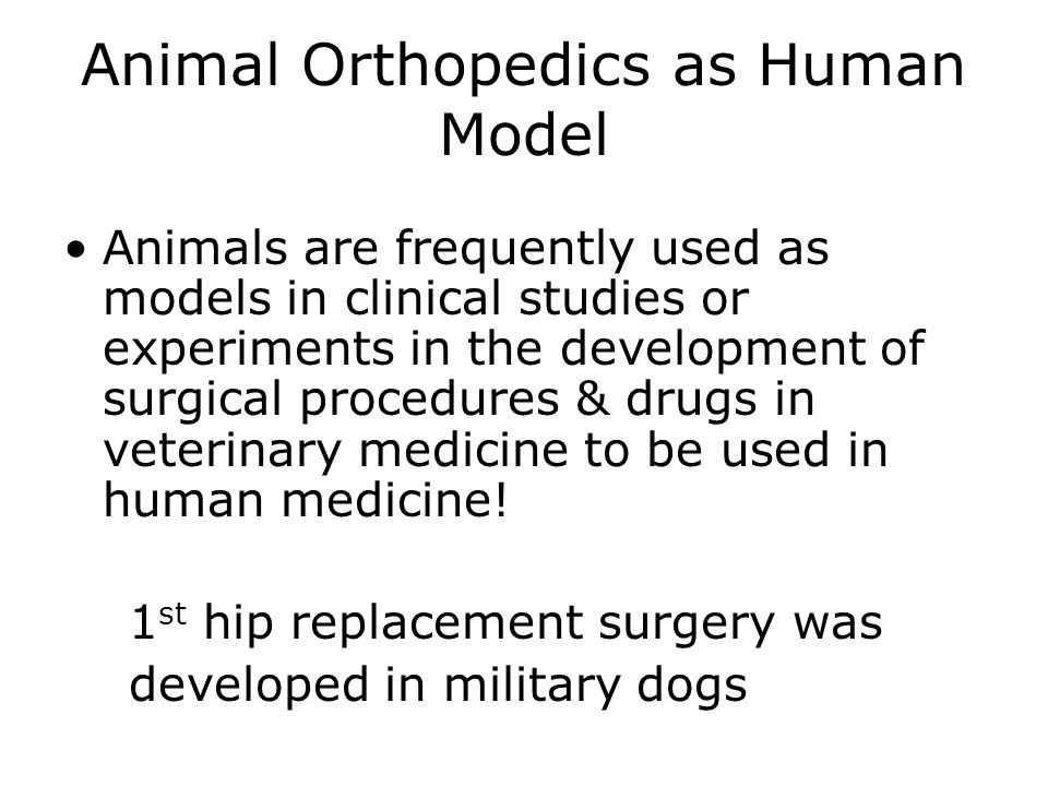 Animal Orthopedics as Human Model Animals are frequently used as models in clinical studies or experiments in the development of surgical procedures & drugs in veterinary medicine to be used in human medicine.
