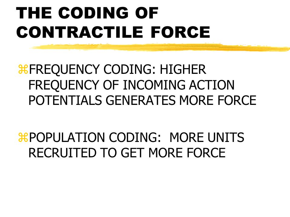 THE CODING OF CONTRACTILE FORCE zFREQUENCY CODING: HIGHER FREQUENCY OF INCOMING ACTION POTENTIALS GENERATES MORE FORCE zPOPULATION CODING: MORE UNITS RECRUITED TO GET MORE FORCE