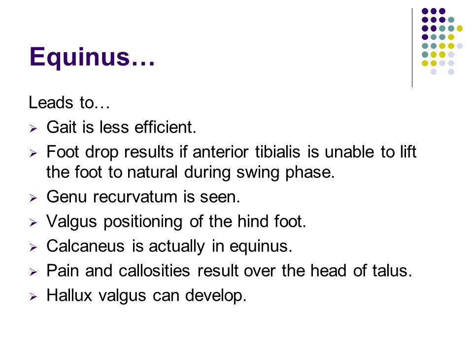 Equinus… Leads to…  Gait is less efficient.