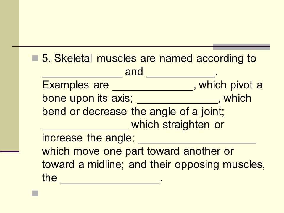 3. The _________________ is located on the bone that remains relatively stationary and the ___________ is located on the bone that moves when the musc