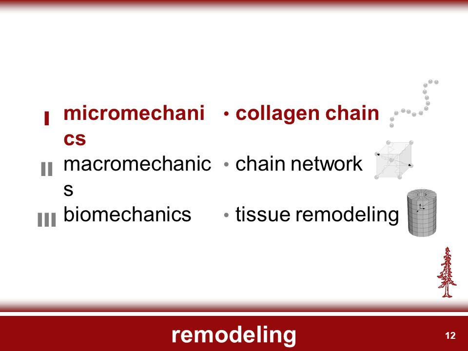 12 remodeling micromechani cs I collagen chain macromechanic s II chain network biomechanics III tissue remodeling