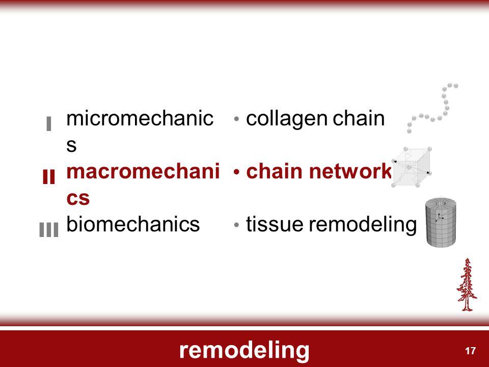 17 remodeling micromechanic s I collagen chain macromechani cs II chain network biomechanics III tissue remodeling