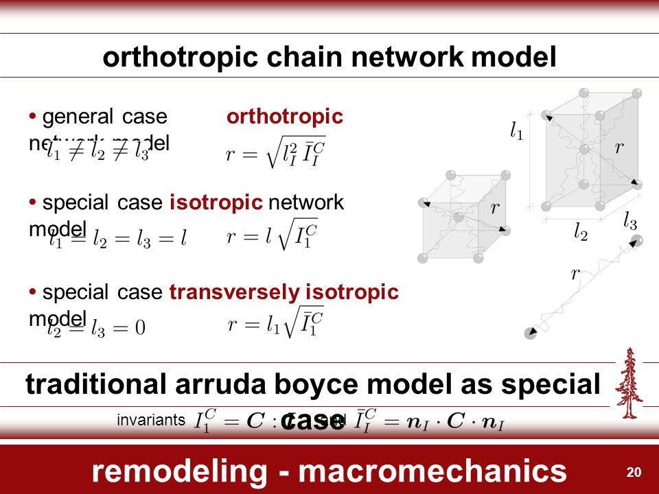 20 remodeling - macromechanics orthotropic chain network model invariants and traditional arruda boyce model as special case general caseorthotropic n
