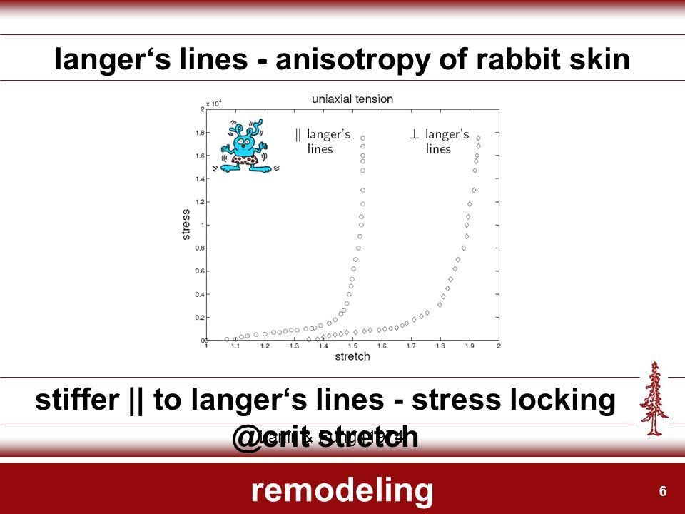 6 remodeling langer's lines - anisotropy of rabbit skin stiffer || to langer's lines - stress locking @crit stretch Lanir & Fung [1974]