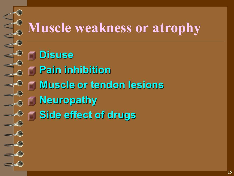 19 Muscle weakness or atrophy 4 Disuse 4 Pain inhibition 4 Muscle or tendon lesions 4 Neuropathy 4 Side effect of drugs
