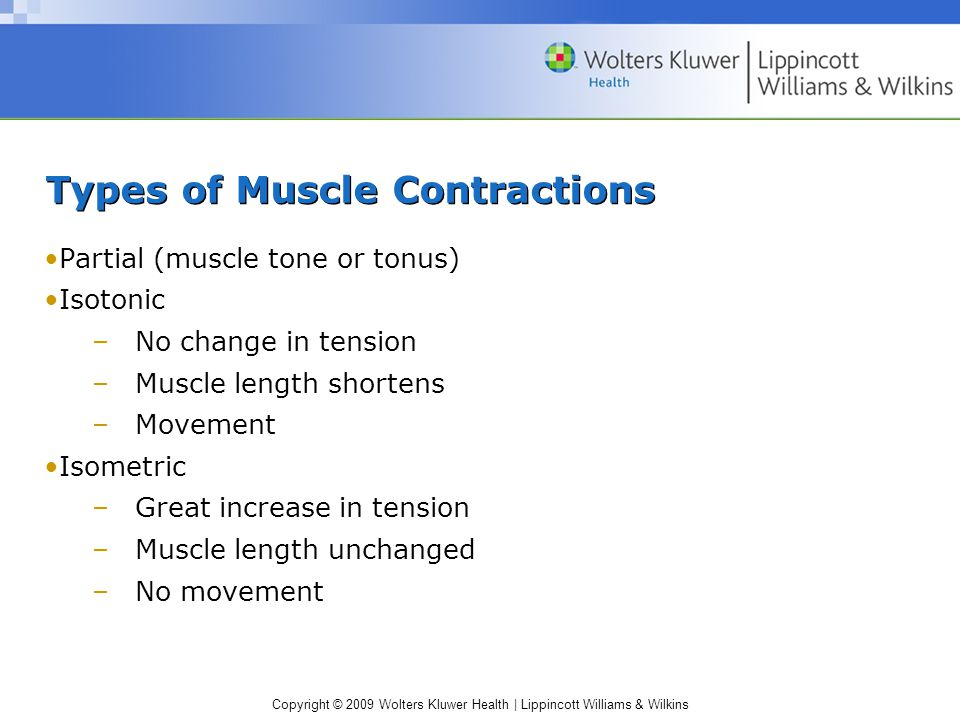Copyright © 2009 Wolters Kluwer Health | Lippincott Williams & Wilkins Types of Muscle Contractions Partial (muscle tone or tonus) Isotonic –No change in tension –Muscle length shortens –Movement Isometric –Great increase in tension –Muscle length unchanged –No movement