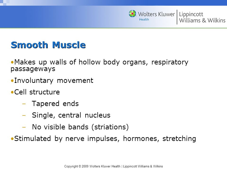 Copyright © 2009 Wolters Kluwer Health | Lippincott Williams & Wilkins Smooth Muscle Makes up walls of hollow body organs, respiratory passageways Involuntary movement Cell structure –Tapered ends –Single, central nucleus –No visible bands (striations) Stimulated by nerve impulses, hormones, stretching