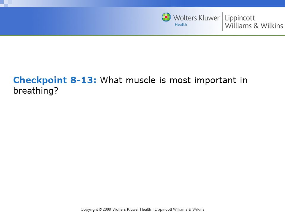Copyright © 2009 Wolters Kluwer Health | Lippincott Williams & Wilkins Checkpoint 8-13: What muscle is most important in breathing?