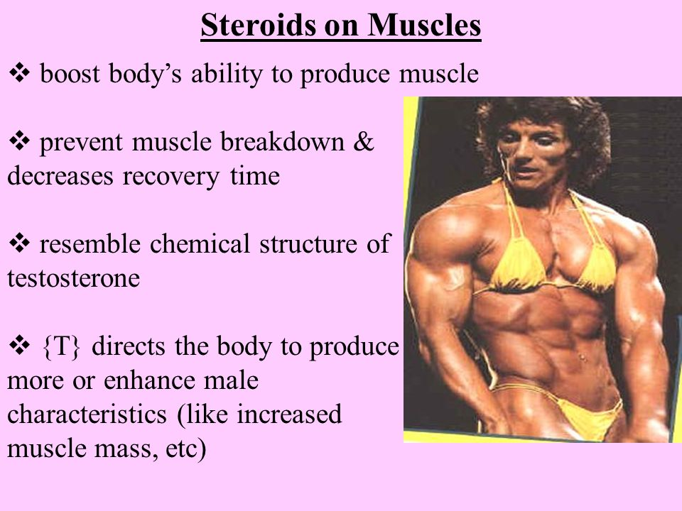 Steroids on Muscles  boost body's ability to produce muscle  prevent muscle breakdown & decreases recovery time  resemble chemical structure of tes