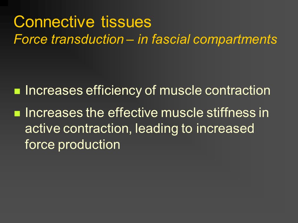 Connective tissues Force transduction – in fascial compartments Increases efficiency of muscle contraction Increases the effective muscle stiffness in active contraction, leading to increased force production