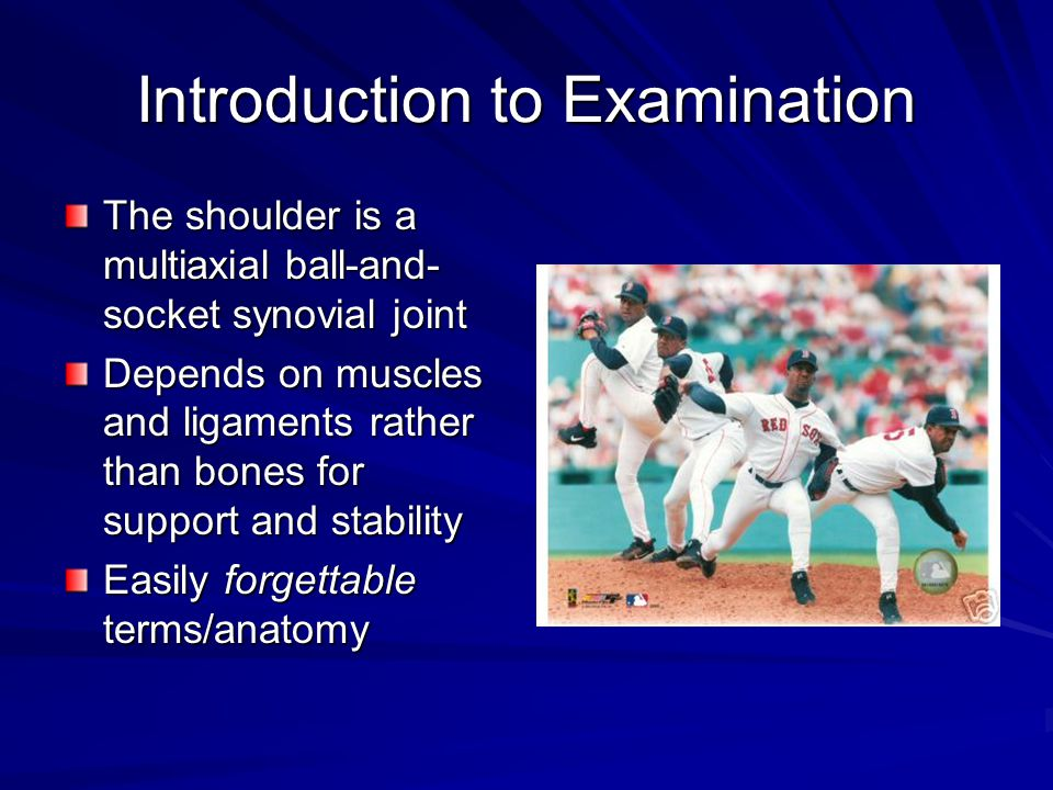 Introduction to Examination The shoulder is a multiaxial ball-and- socket synovial joint Depends on muscles and ligaments rather than bones for support and stability Easily forgettable terms/anatomy