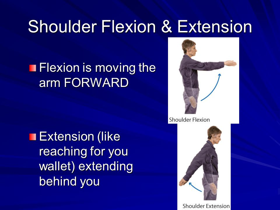Shoulder Flexion & Extension Flexion is moving the arm FORWARD Extension (like reaching for you wallet) extending behind you