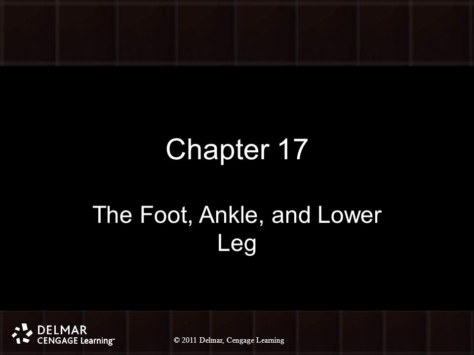© 2010 Delmar, Cengage Learning 2 © 2011 Delmar, Cengage Learning Chapter 17 The Foot, Ankle, and Lower Leg