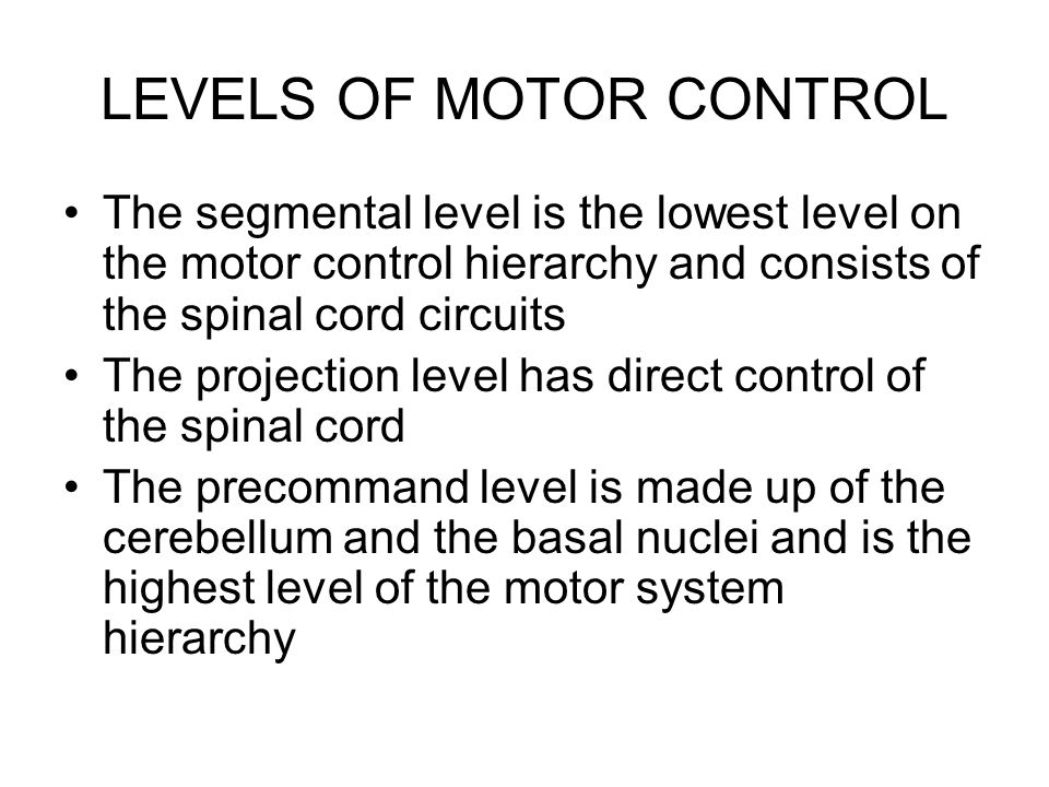 LEVELS OF MOTOR CONTROL The segmental level is the lowest level on the motor control hierarchy and consists of the spinal cord circuits The projection level has direct control of the spinal cord The precommand level is made up of the cerebellum and the basal nuclei and is the highest level of the motor system hierarchy