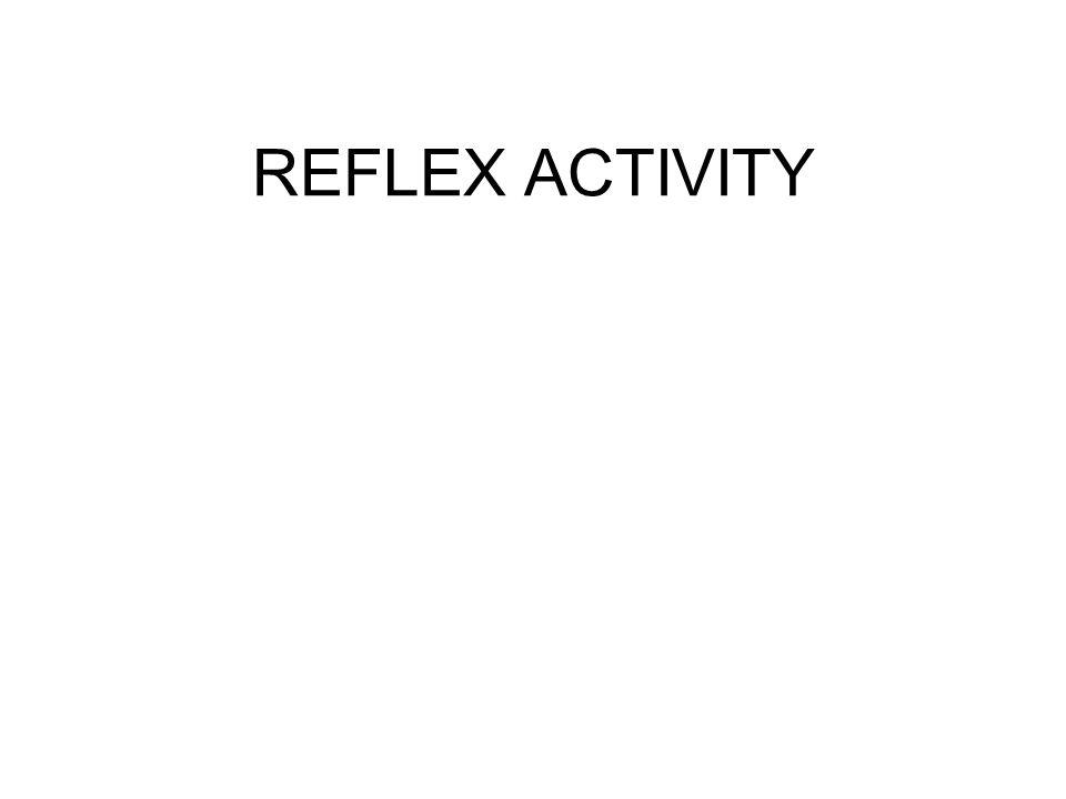 REFLEX ACTIVITY