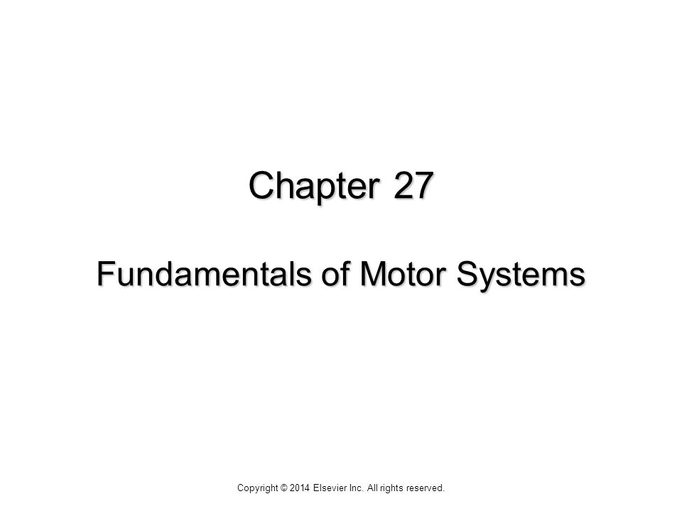 Chapter 27 Fundamentals of Motor Systems Copyright © 2014 Elsevier Inc. All rights reserved.